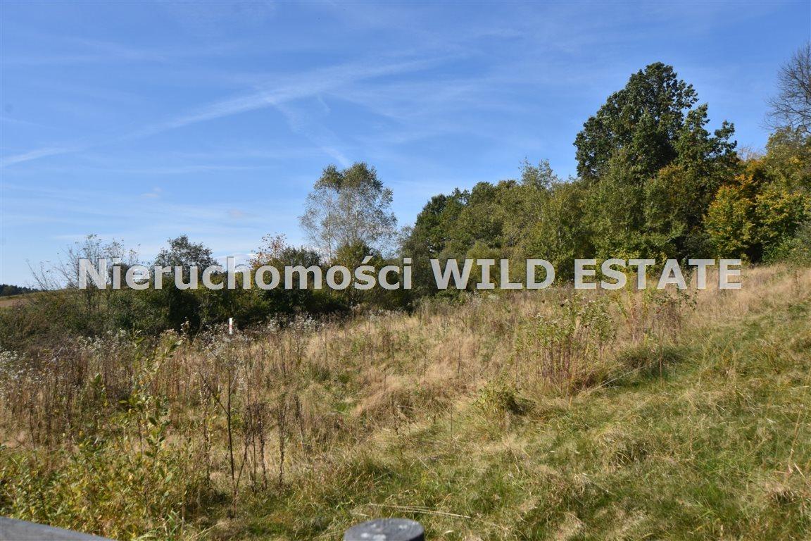 Działka rolna na sprzedaż Olszanica, Orelec  2489m2 Foto 1