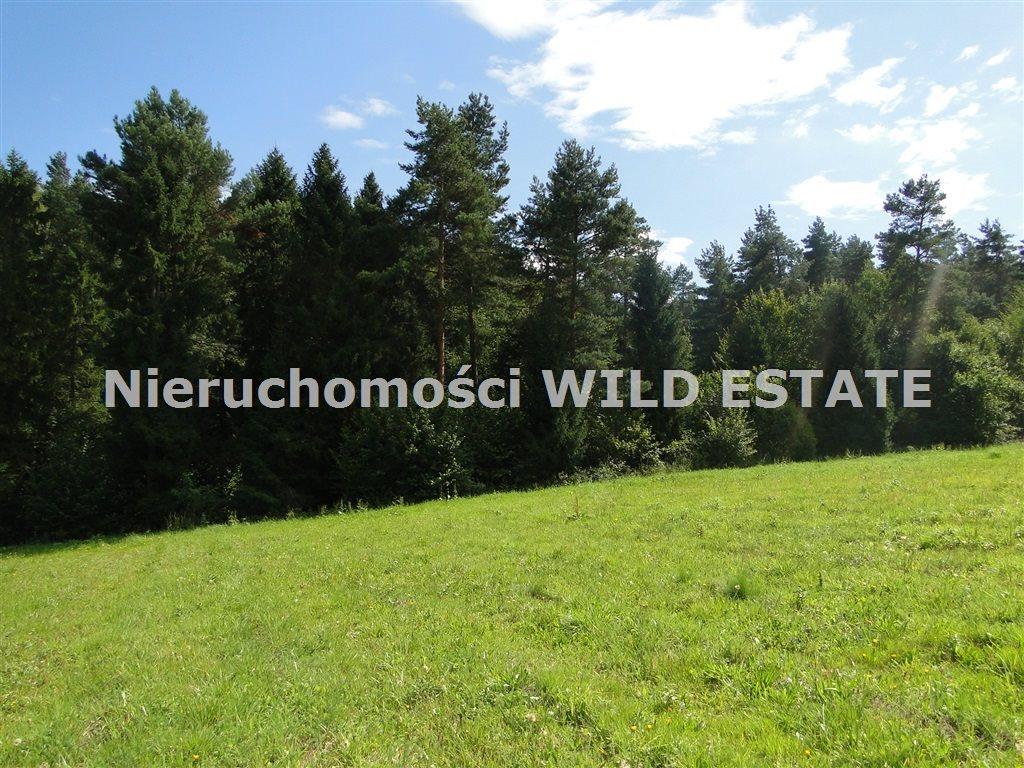 Działka rolna na sprzedaż Solina, Berezka  9400m2 Foto 1