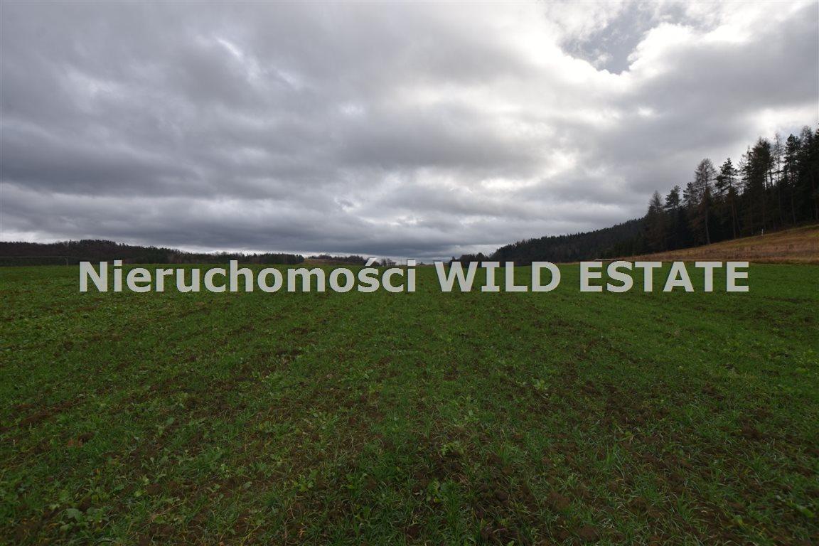 Działka rolna na sprzedaż Solina, Berezka  9520m2 Foto 6