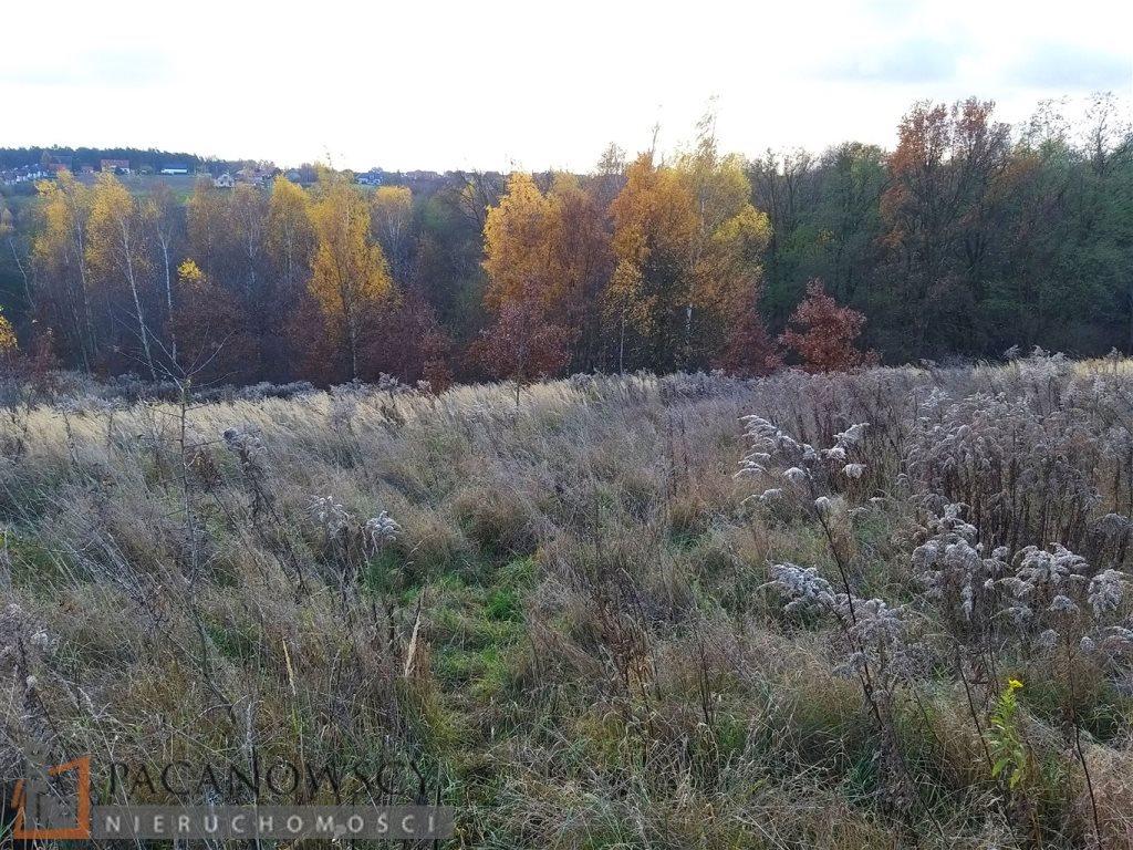 Działka leśna na sprzedaż Michałowice  5000m2 Foto 4