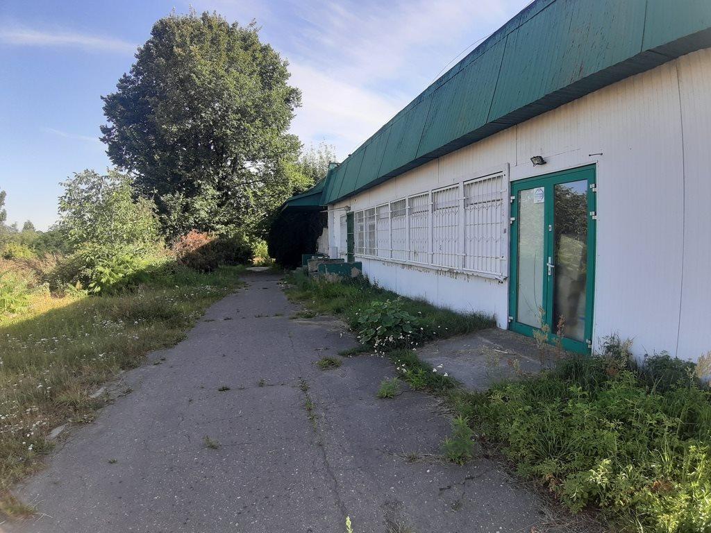 Lokal użytkowy na wynajem Gniezno  380m2 Foto 4