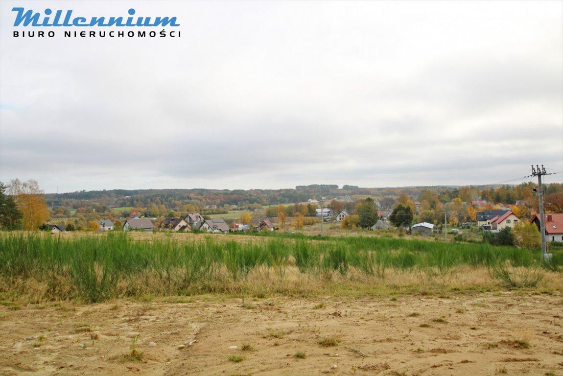 Działka rolna na sprzedaż Nowy Dwór Wejherowski  18766m2 Foto 9