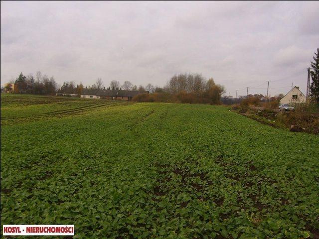 Działka rolna na sprzedaż Pieniężno  21200m2 Foto 2