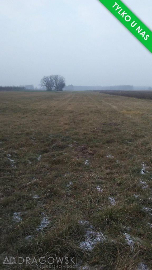 Działka rolna na sprzedaż Ludwinowo Zegrzyńskie  10098m2 Foto 3