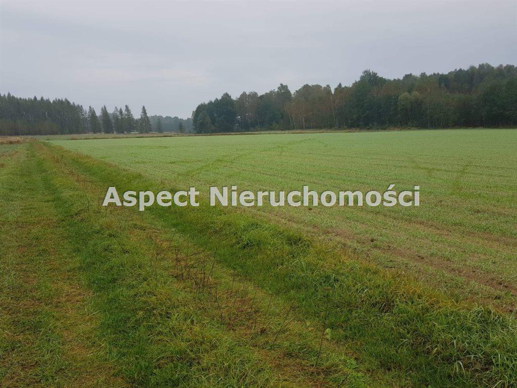 Działka rolna na sprzedaż TUROŚŃ KOŚCIELNA, CZACZKI WIELKIE  39500m2 Foto 1