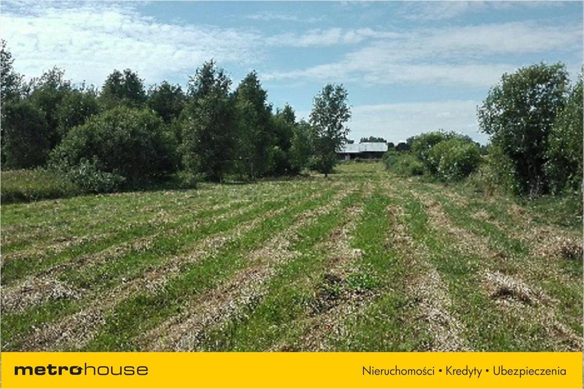 Działka rolna na sprzedaż Pierwągi, Jeziorany  5991m2 Foto 3
