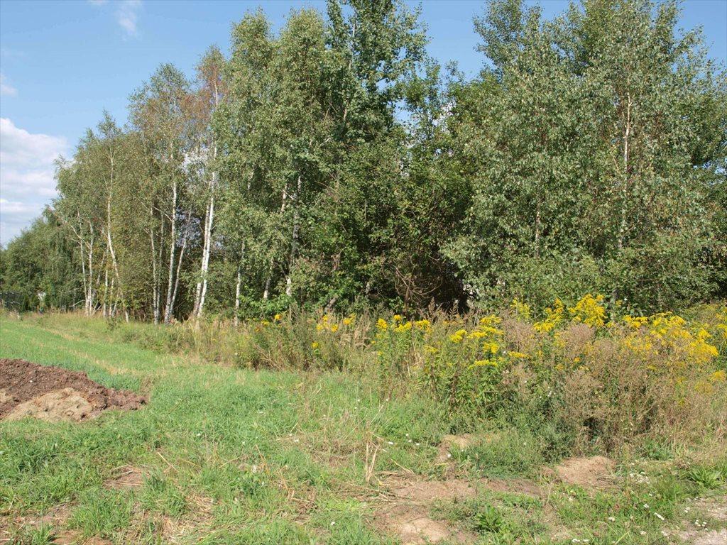 Działka budowlana na sprzedaż Wierzchowisko  1054m2 Foto 6