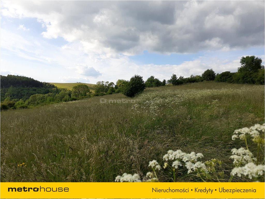 Działka rolna na sprzedaż Morochów, Zagórz  10000m2 Foto 6