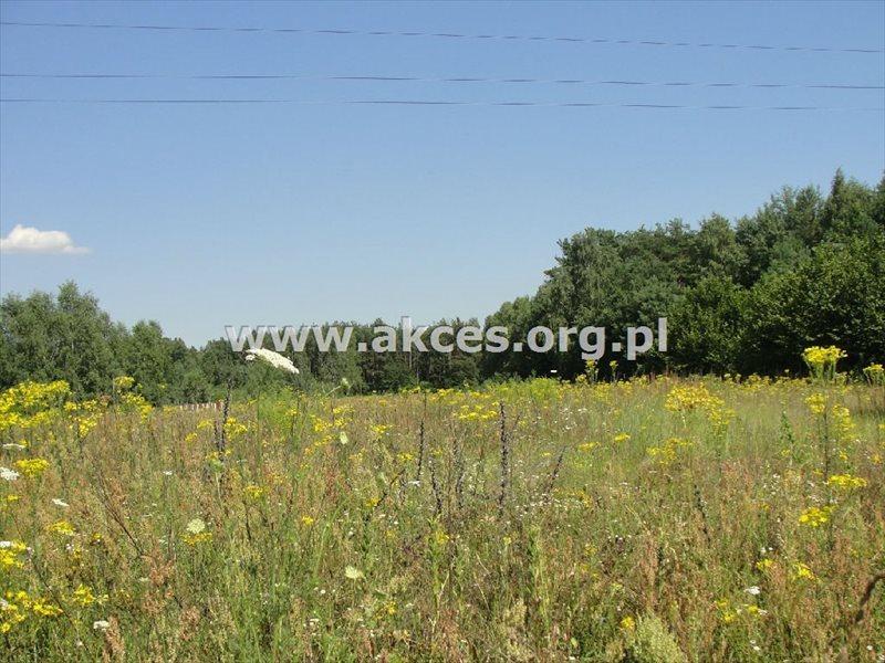 Działka budowlana na sprzedaż Jeziórko  1277m2 Foto 4