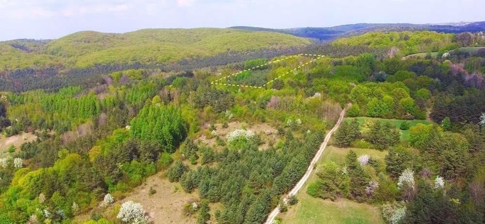 Działka rolna na sprzedaż Krzywopłoty  51135m2 Foto 3