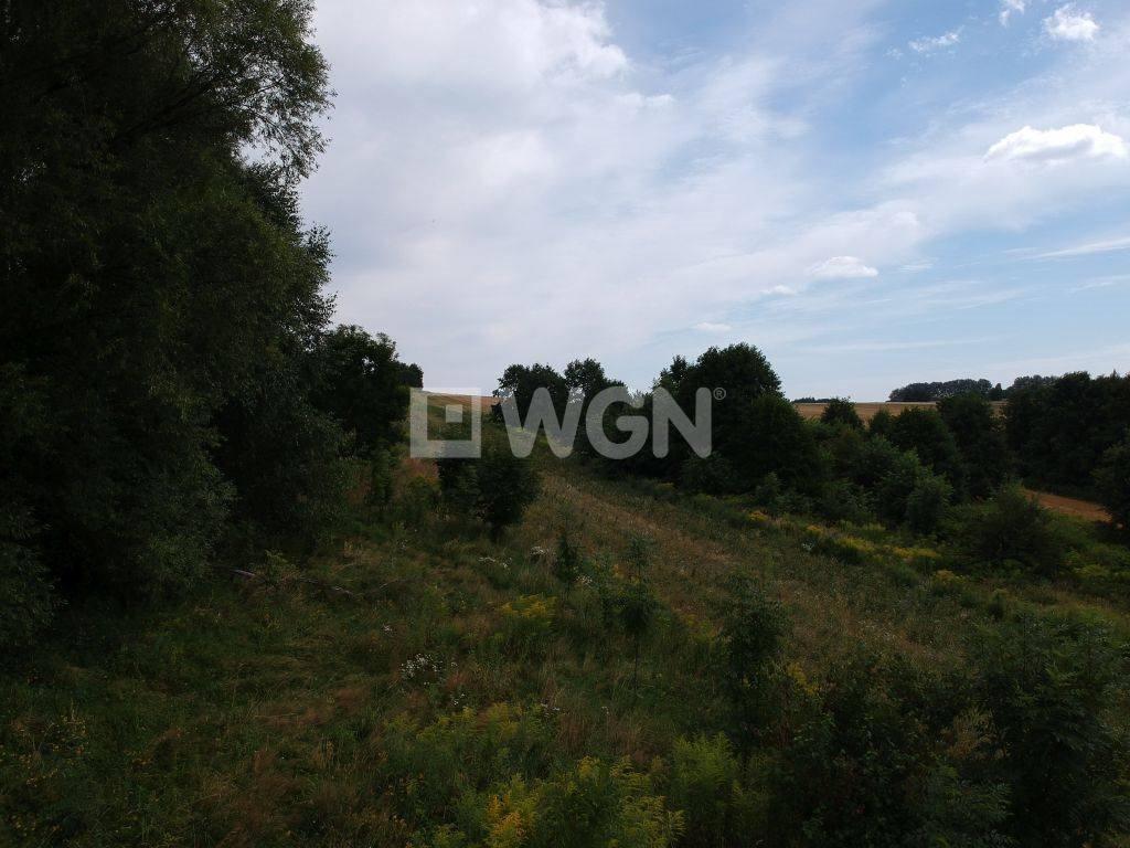 Działka rolna na sprzedaż Nowa Góra, Łany, Łany  1200m2 Foto 3