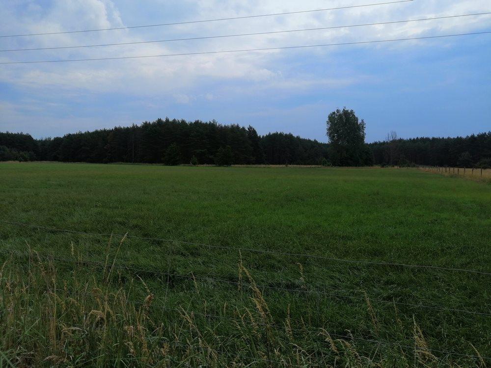 Działka siedliskowa na sprzedaż Sowno  16100m2 Foto 6
