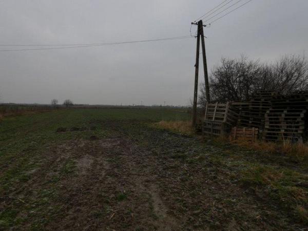 Działka rolna na sprzedaż Sicienko  20000m2 Foto 1