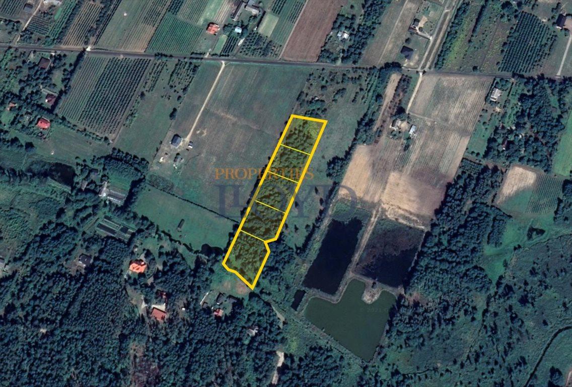 Działka rolna na sprzedaż Kruszew, kruszew  3000m2 Foto 3