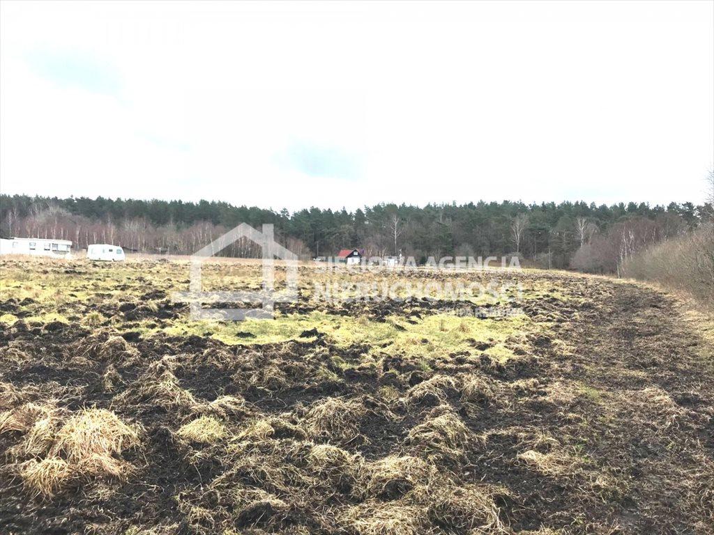 Działka rolna na sprzedaż Sasino  28300m2 Foto 6
