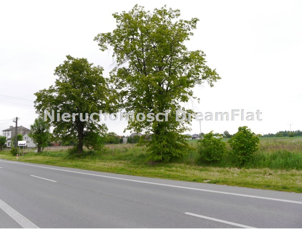 Działka budowlana na sprzedaż Końskie, Modliszewice  2300m2 Foto 4