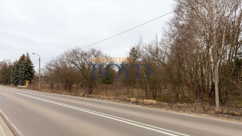 Działka inwestycyjna na sprzedaż Robercin, Podskarbińska  14500m2 Foto 9