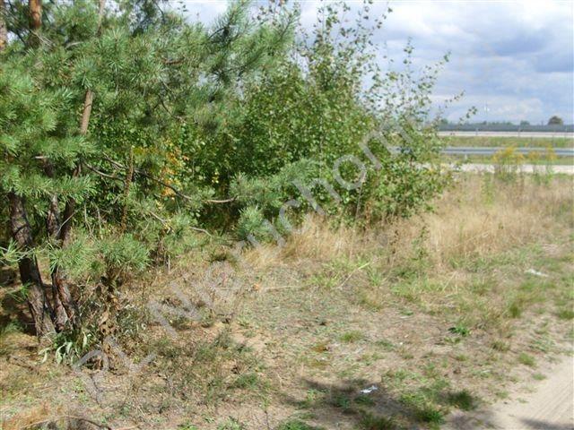 Działka rolna na sprzedaż Mszczonów  4015m2 Foto 5