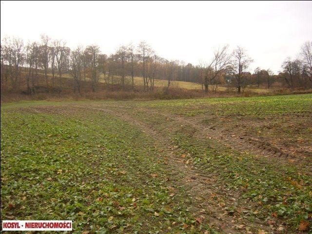 Działka rolna na sprzedaż Pieniężno  21200m2 Foto 1