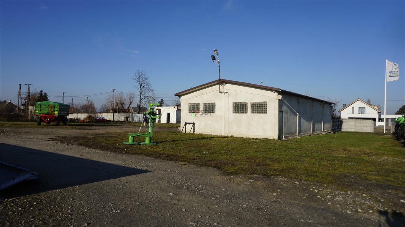 Działka inwestycyjna na sprzedaż Budziszów Wielki  9276m2 Foto 8