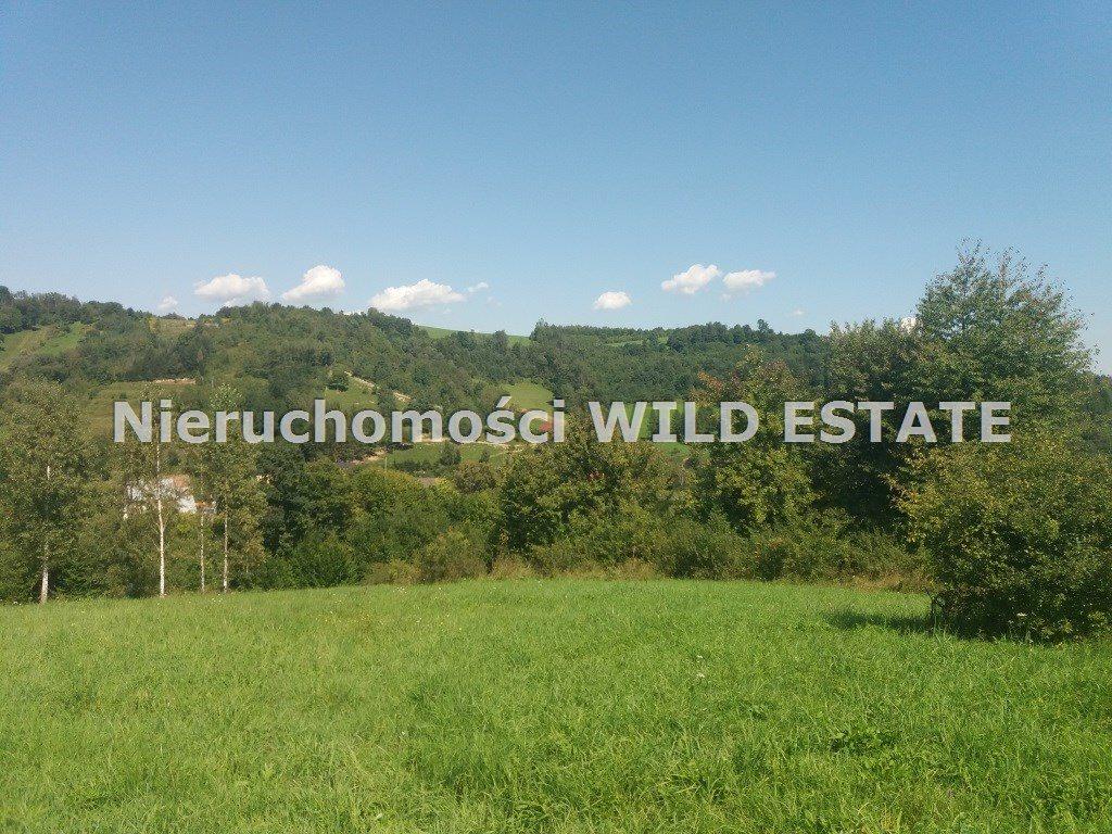 Działka rolna na sprzedaż Solina, Wołkowyja  8300m2 Foto 3