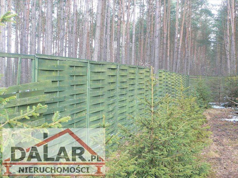 Działka budowlana na sprzedaż Chynów, Grobice Nowe  3526m2 Foto 4