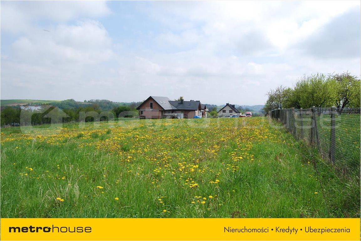Działka rolna na sprzedaż Przybysławice, Zielonki  5992m2 Foto 11