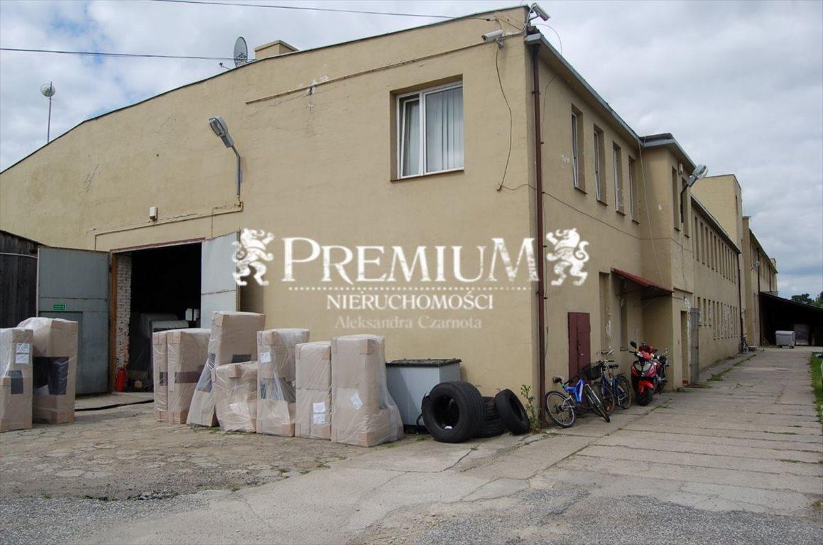 Lokal użytkowy na sprzedaż Dobroszyce, Dobroszyce  3300m2 Foto 3
