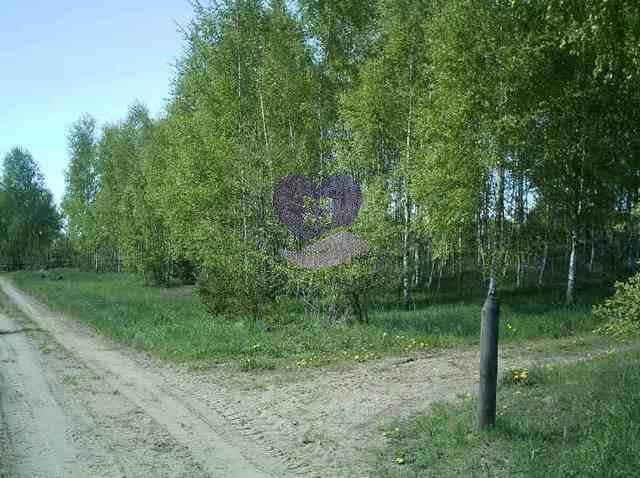 Działka rolna na sprzedaż Studzianki  1611m2 Foto 1