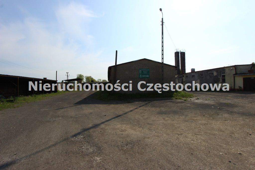 Działka inna pod dzierżawę Puszczew  9921m2 Foto 3