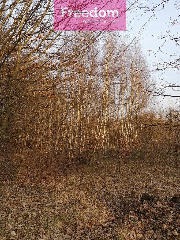 Działka leśna na sprzedaż Sobno  142300m2 Foto 13