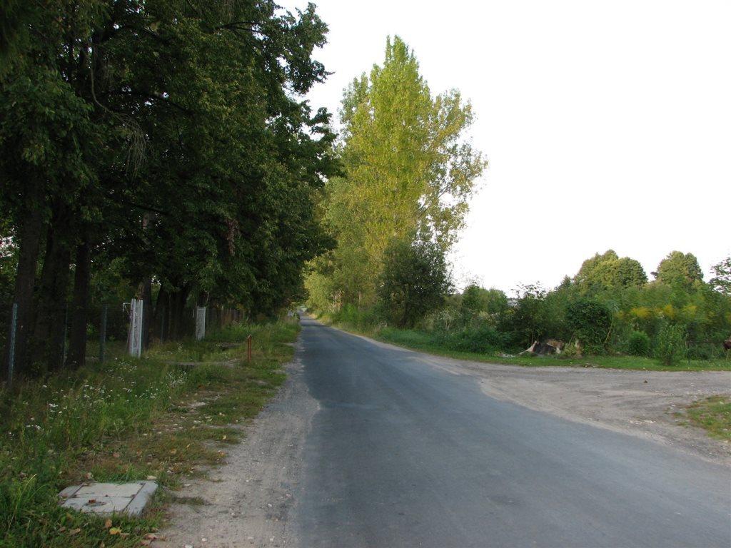 Działka siedliskowa na sprzedaż Słubica-Wieś  3000m2 Foto 5
