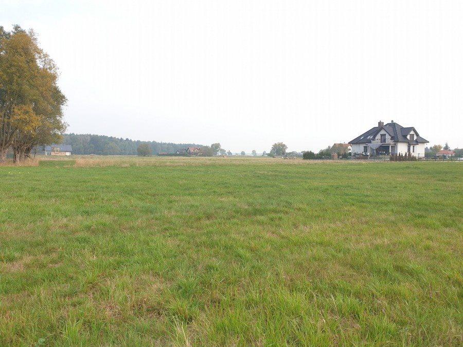 Działka rolna na sprzedaż Dobra, TRASZKI  3350m2 Foto 5