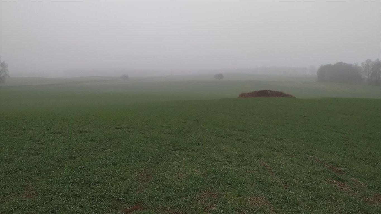 Działka gospodarstwo rolne na sprzedaż Wyszki  7000000m2 Foto 3