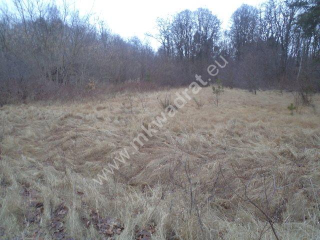 Działka leśna na sprzedaż Raducz  8600m2 Foto 9