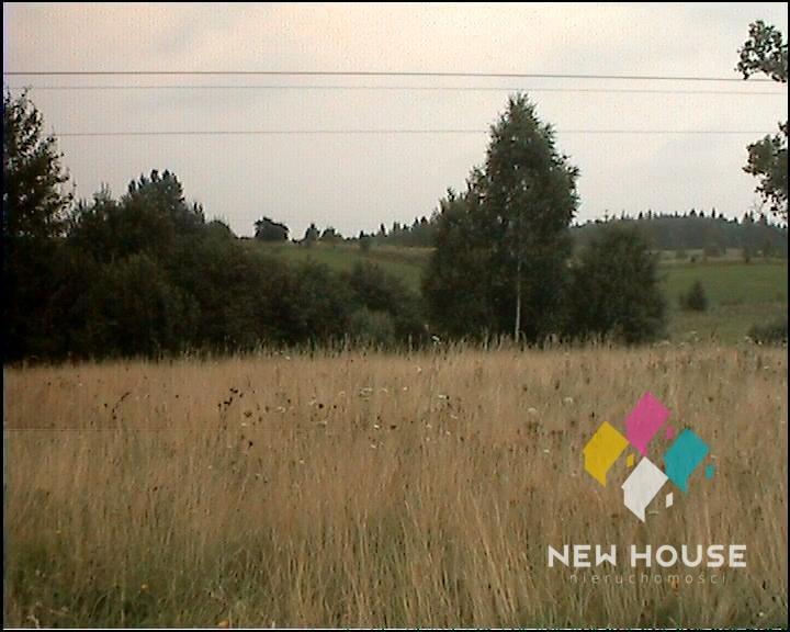 Działka rolna na sprzedaż Szałstry  6200m2 Foto 8