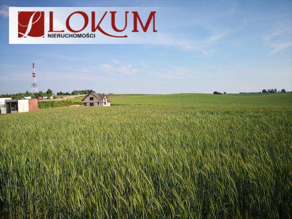 Działka przemysłowo-handlowa na sprzedaż Kleszczewo, Jodłowa  15009m2 Foto 4
