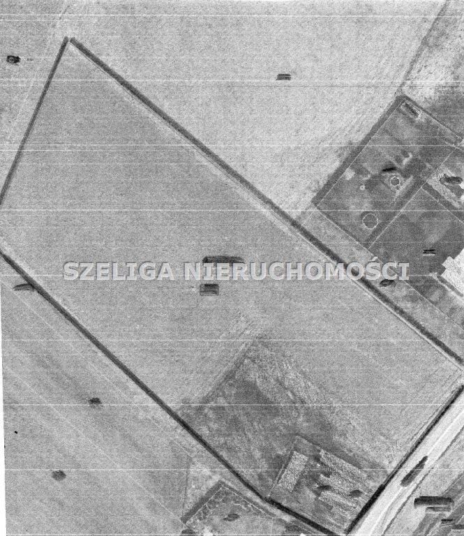 Działka inna na sprzedaż Gliwice, Brzezinka  7172m2 Foto 1