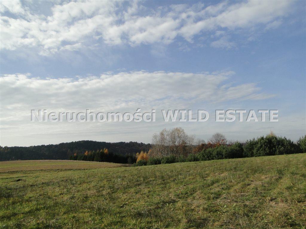 Działka rolna na sprzedaż Solina, Berezka  10398m2 Foto 2