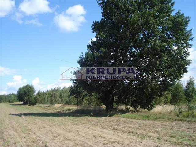 Działka rolna na sprzedaż Jachranka, Letnia (1)  970m2 Foto 2