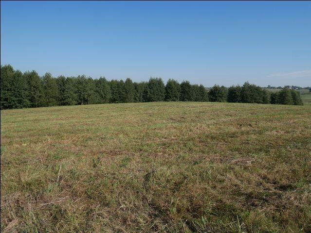 Działka rolna na sprzedaż Skolity  97248m2 Foto 7
