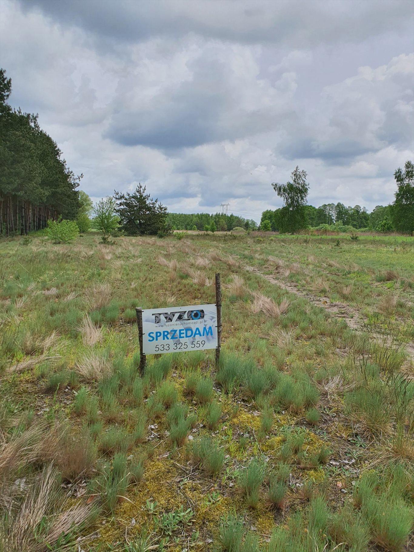 Działka rolna na sprzedaż Warszówka  12200m2 Foto 8