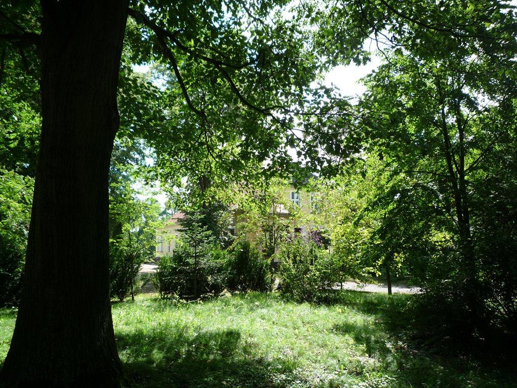 Dom na sprzedaż Popowo Kościelne, 38  650m2 Foto 14