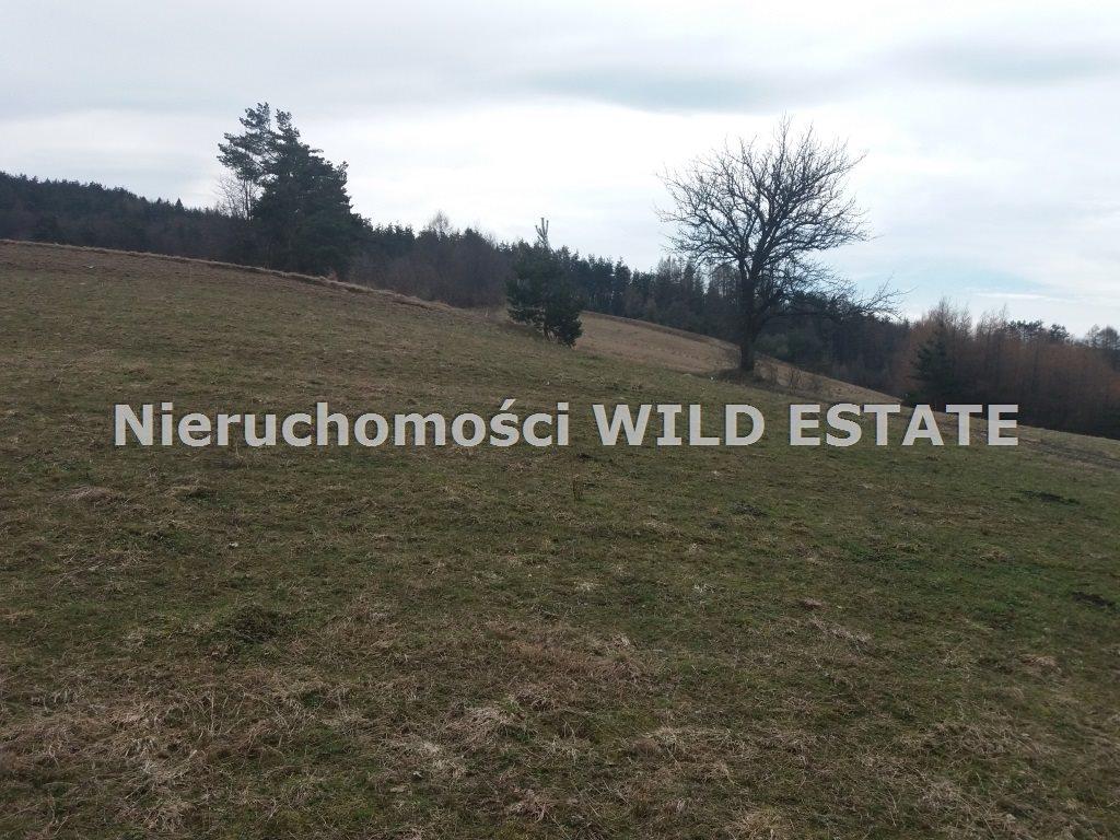 Działka rolna na sprzedaż Solina, Wola Matiaszowa  22400m2 Foto 3