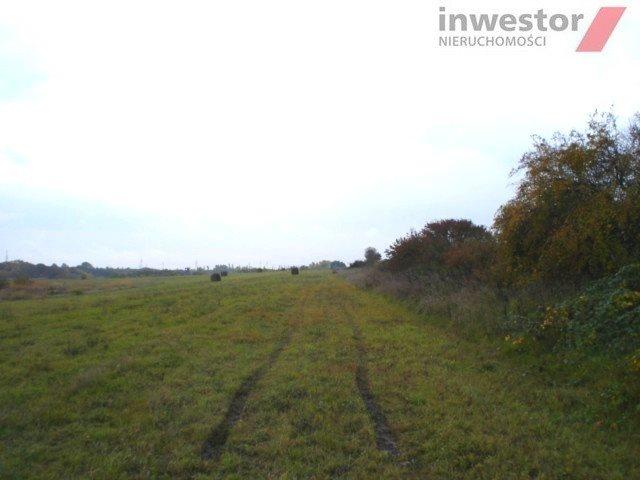 Działka rolna na sprzedaż Szczecin, Bukowo  5293m2 Foto 2