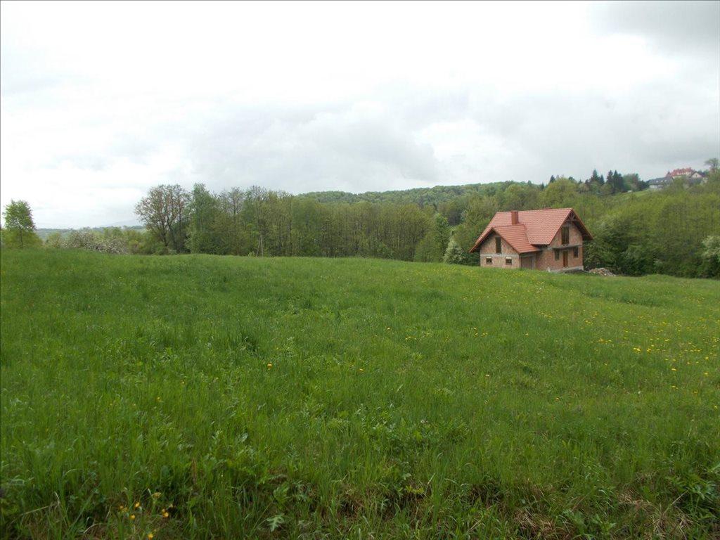 Działka rolna na sprzedaż Sułów, Biskupice  15000m2 Foto 8