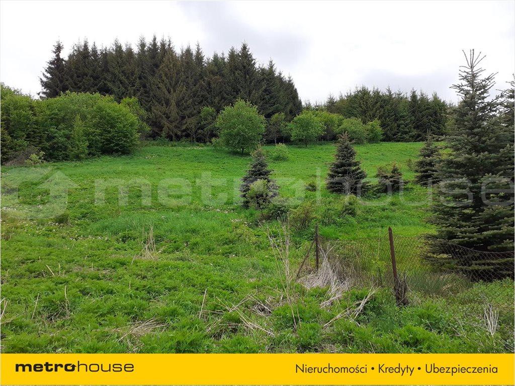 Działka rolna na sprzedaż Wojtkówka, Ustrzyki Dolne  9300m2 Foto 7