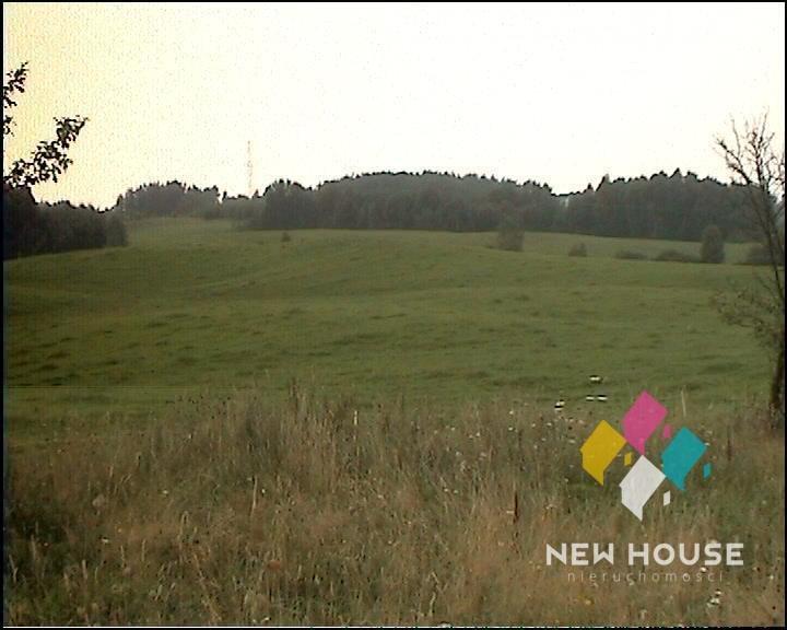 Działka rolna na sprzedaż Szałstry  6200m2 Foto 10