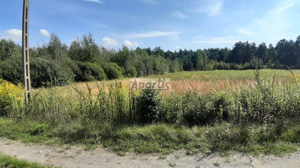 Działka rolna na sprzedaż Budziska  26743m2 Foto 1