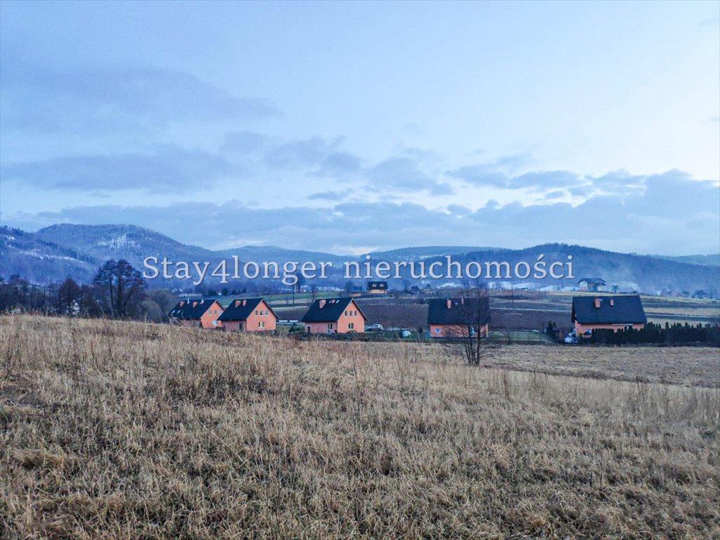 Działka rolna na sprzedaż Sosnówka  39742m2 Foto 1